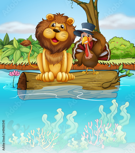 Canvas Prints River, lake A lion and a turkey above a floating trunk
