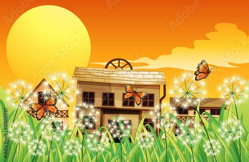 Foto op Plexiglas Wild West Houses with different designs