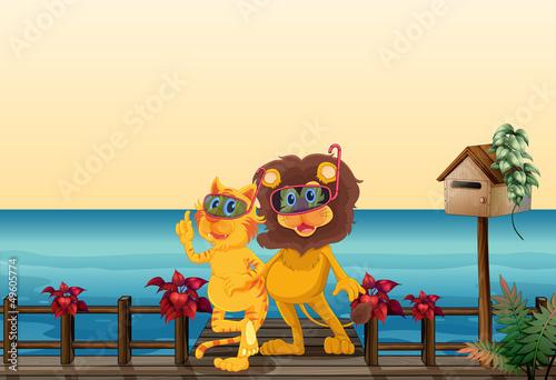 Fotobehang Beren A lion and a tiger at the bridge