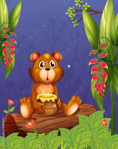 La pose en embrasure Ours A bear holding a pot of honey at the woods