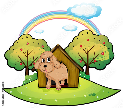 Foto op Canvas Pistache A dog with a doghouse