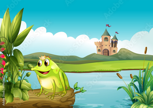 Poster Castle A frog with a crown