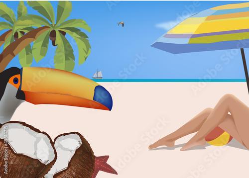 Poster Vogels, bijen vacanza