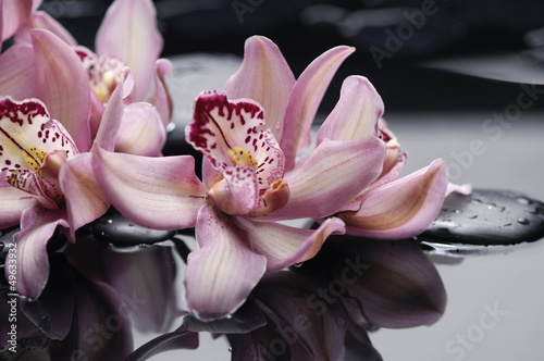 Spoed Fotobehang Spa spa concept –gorgeous pink orchid and zen stones