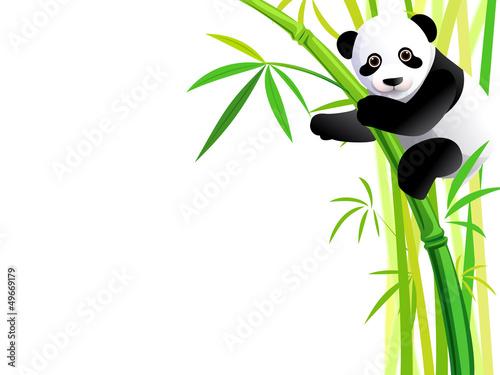 panda on bamboo