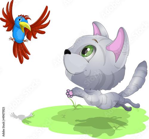 Poster Vogels, bijen kitten and parrot