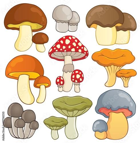 Foto auf Gartenposter Die magische Welt Mushroom theme collection 1