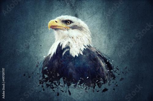 Poster Aigle Eagle