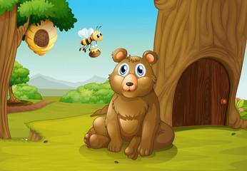 Medvjed i pčela u blizini kućice na drvetu
