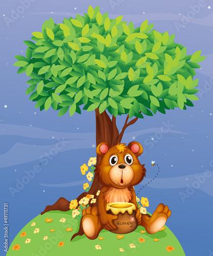 Wall Murals Bears A bear holding a honey under a tree