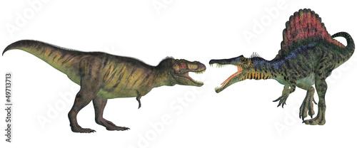 Fototapeta  tyrannosaurus contre spinosaurus