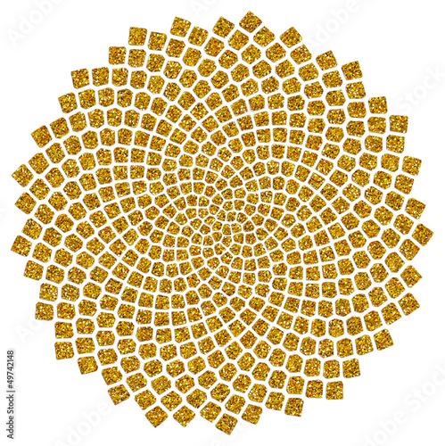 Spoed Fotobehang Spiraal Sonnenblumen - Samen - Fibonacci-Spirale - Goldener Schnitt