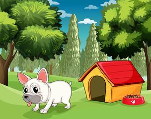 Kućica za pse u parku
