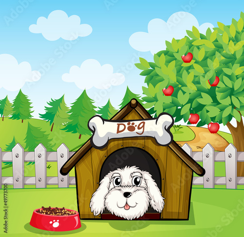 Poster Dogs A puppy inside a doghouse near an apple tree