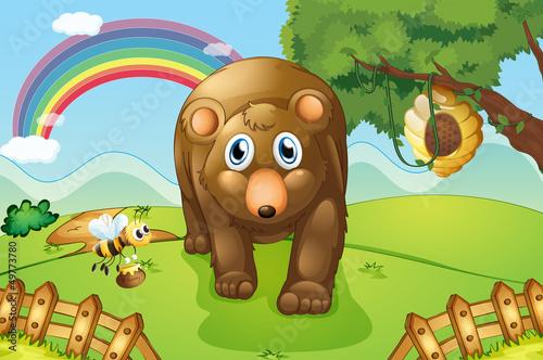 Wall Murals Bears A big brown bear at the hills