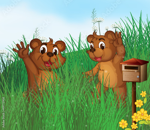 Staande foto Beren Two young bears near a wooden mailbox