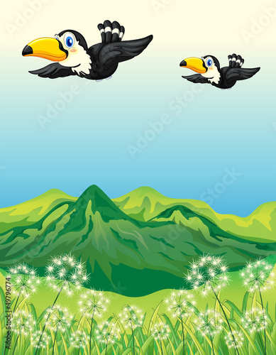 Poster Vogels, bijen Two birds flying along the mountains