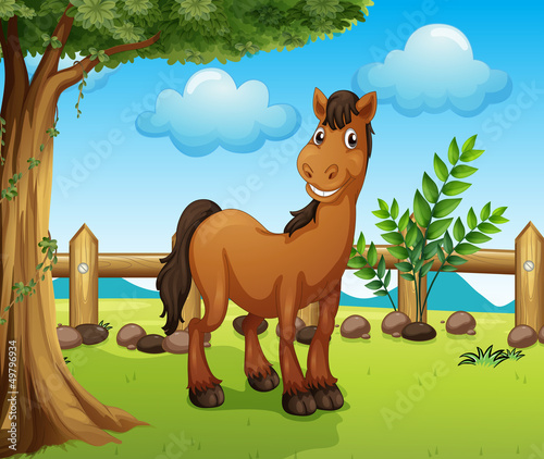 In de dag Boerderij Happy brown horse inside a fence