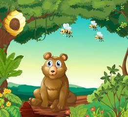 Medvjed i tri pčele u šumi