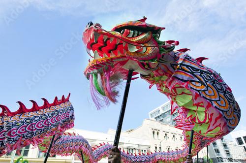 Tuinposter China Wellington Chinese New Year Snake