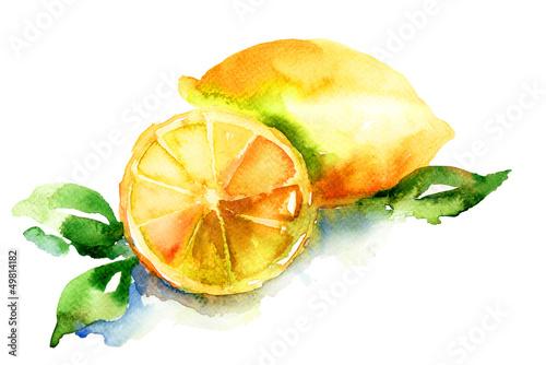 akwarela-ilustracja-cytryny