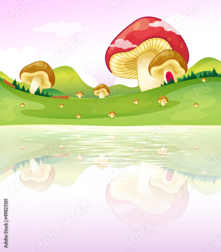 Cadres-photo bureau Monde magique Mushrooms near the lake