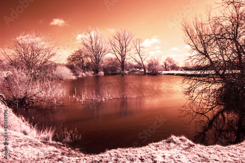 Fotografering  Infrared landscape - lake with trees