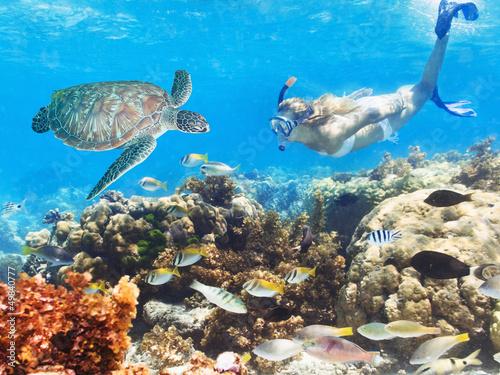 In de dag Koraalriffen Diver and turtle