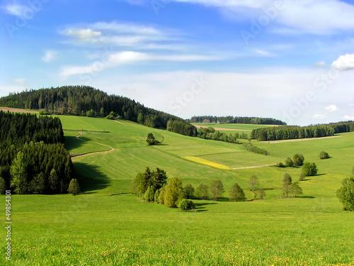 Deurstickers Weide, Moeras Hills of Muehlviertel