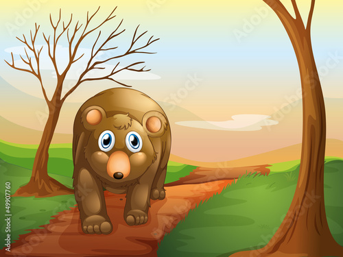 Tuinposter Beren The lonely bear walking
