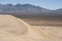 Kelso Sand Dunes Landscape