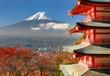 Mt. Fuji and Pagoda
