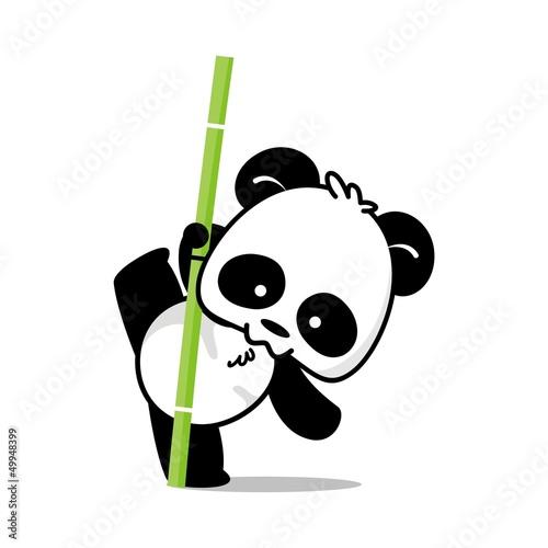 Fotografie, Obraz  Panda Style 4