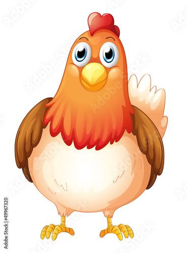 Spoed Foto op Canvas Boerderij A big fat hen