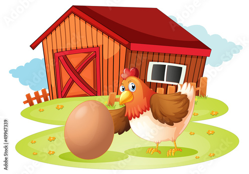 Photo sur Toile Ferme A hen with egg