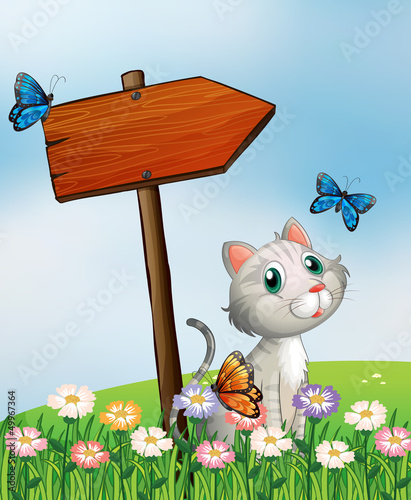 Foto op Canvas Katten A cat with three butterflies beside the wooden arrow board