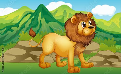 Foto op Aluminium Zoo A lion in a mountain scenery