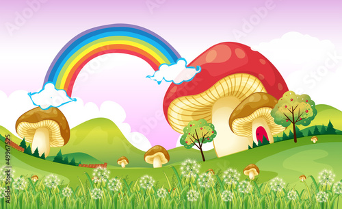 Photo Stands Magic world Mushrooms near the rainbow