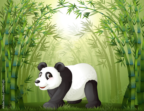 Wall Murals Bears Bamboo trees with a panda at the center