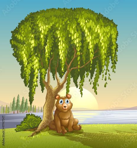 Wall Murals Bears A bear under a big tree