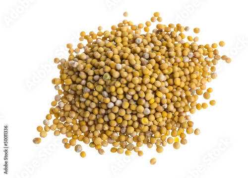Fotografia yellow mustard seeds