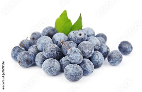 Valokuvatapetti Sloe berry