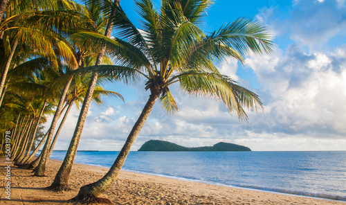 Photo Tropical beach with palm trees