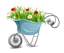 Gardening. Wheelbarrow With Fl...