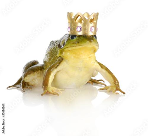 Obraz na plátně handsome prince
