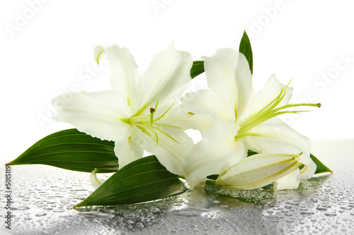 Wall Murals Water lilies Beautiful lily, isolated on white