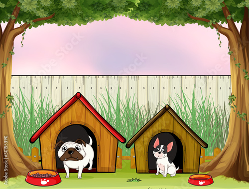 Poster Dogs Two pets inside the fence with wooden houses