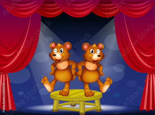 Ingelijste posters Beren Two bears above the table performing at the stage