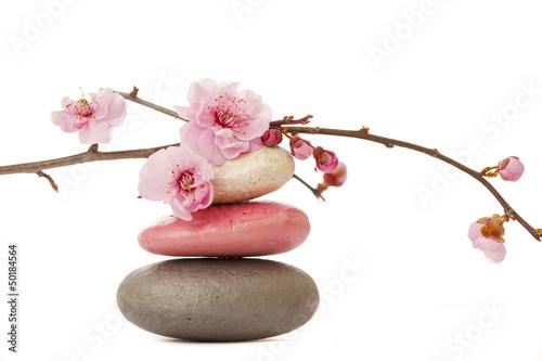 Recess Fitting Zen fleur de printemps