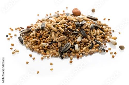 Photo Mélange de graines pour perruches.